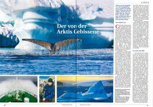 Hohenlohe Trends, Ausgabe Mai 2011