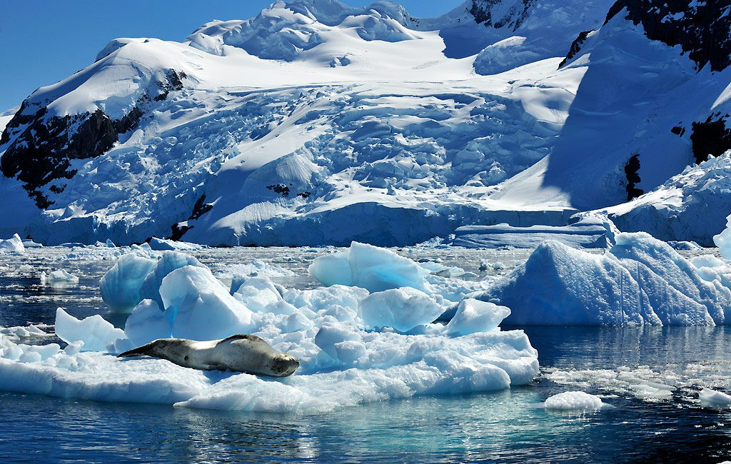 Antarctic Peninsula, Chierva Cove