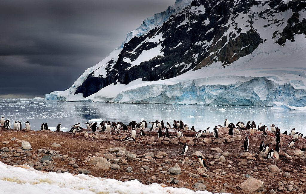 Antarctic Peninsula, Neko Harbour